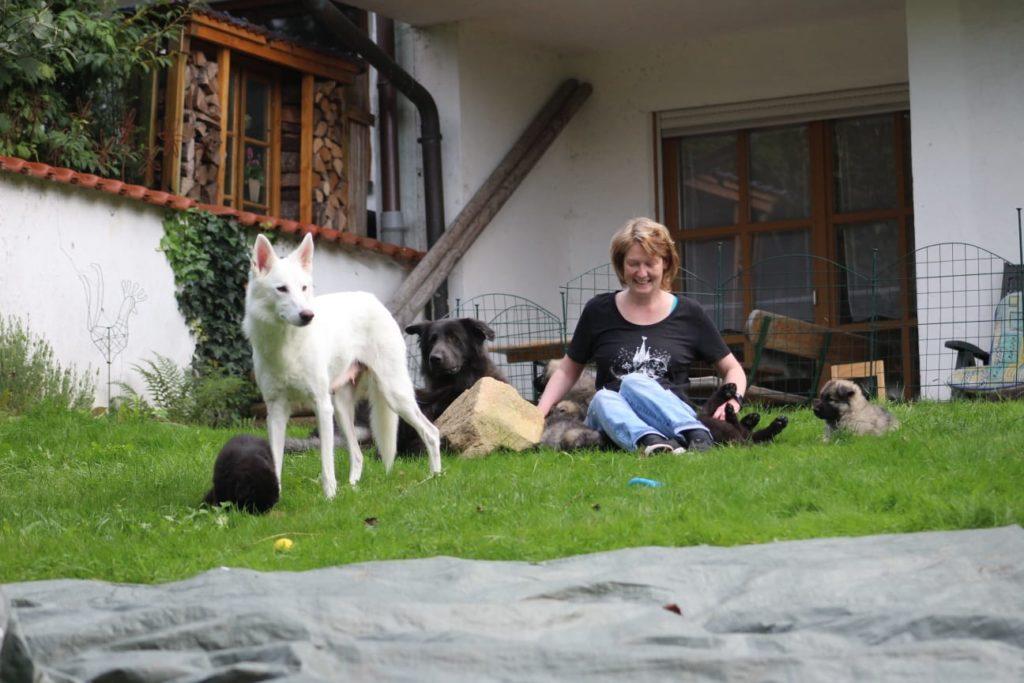 Susanne Galla World of Sylvan Spirit Blog